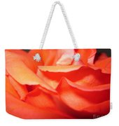 Blushing Orange Rose 6 Weekender Tote Bag