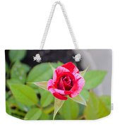 Blushing Rose Weekender Tote Bag