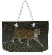 Bob-tail Cat Weekender Tote Bag