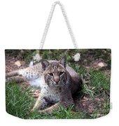 Bobcat 17 Weekender Tote Bag