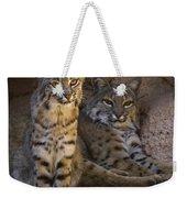 Bobcat 8 Weekender Tote Bag