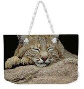 Bobcat, Arizona Weekender Tote Bag
