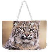 Bobcat Cub Portrait Montana Wildlife Weekender Tote Bag by Dave Welling