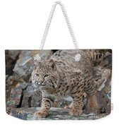 Bobcat On Rock Weekender Tote Bag
