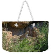 Bobcat Point Weekender Tote Bag