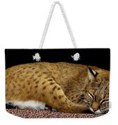 Bobcat Weekender Tote Bag by Rose Santuci-Sofranko