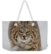 Bobcat Running Forward Weekender Tote Bag by Jerry Fornarotto
