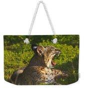 Bobcat Yawn Weekender Tote Bag