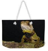 Bocourts Dwarf Iguana Choco Rainforest Weekender Tote Bag