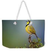 Bokmakierie Bird - Telophorus Zeylonus Weekender Tote Bag by Johan Swanepoel