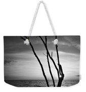 Bonita Beach Tree Black And White Weekender Tote Bag
