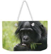 Bonobo Eating Weekender Tote Bag
