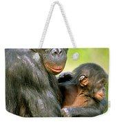 Bonobo Pan Paniscus Mother And Infant Weekender Tote Bag