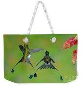 Booted Racket-tail Hummingbird Males Weekender Tote Bag