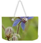 Borage Wildflower - Borage Officinalis - Annual Herb Weekender Tote Bag