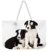 Border Collie Dogs, Two Puppies Weekender Tote Bag