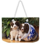 Border Collie Puppies In Plant Pot Weekender Tote Bag