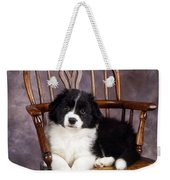 Border Collie Puppy On Chair Weekender Tote Bag
