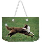 Border Collie Running Weekender Tote Bag