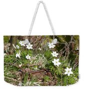 Born Of Snow Weekender Tote Bag