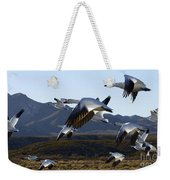 Bosque Del Apache Snow Geese In Flight Weekender Tote Bag by Bob Christopher
