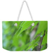 Boston Ivy Bokeh Weekender Tote Bag