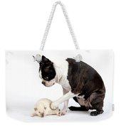 Boston Terrier & Mink Rat Weekender Tote Bag
