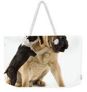 Boston Terrier And Mastiff Weekender Tote Bag