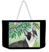 Boston Terrier Dog Tree Frog Cathy Peek Art Weekender Tote Bag