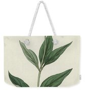 Botanical Engraving Weekender Tote Bag
