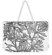 Botany: African Rue, 1597 Weekender Tote Bag