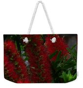 Bottle Brush Weekender Tote Bag