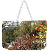 Bottlebrush In Sierra Nevada Foothills In Winter In Park Sierra-ca Weekender Tote Bag