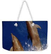 Bottlenose Dolphins Tursiops Truncatus Weekender Tote Bag