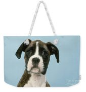 Boxer Dog, Close-up Of Head Weekender Tote Bag by John Daniels