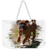 Boxer Puppy 14-1 Weekender Tote Bag
