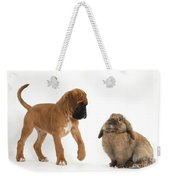 Boxer Puppy With Lionhead-lop Rabbit Weekender Tote Bag