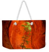 Boynton Canyon 04-343 Weekender Tote Bag by Scott McAllister