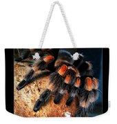 Brachypelma Smithi - Redknee Tarantula Weekender Tote Bag