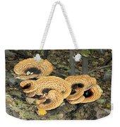 Bracket Fungi Weekender Tote Bag