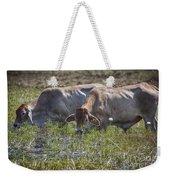 Brahman Cattle At The Waterhole Weekender Tote Bag