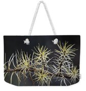 Branch In Winter Weekender Tote Bag
