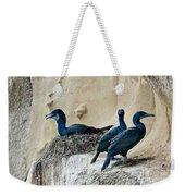Brandts Cormorant Nesting On Cliff Weekender Tote Bag