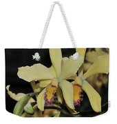 Brassolaeliocattleya Grodsky's Gold Weekender Tote Bag