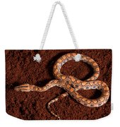 Brazilian Rainbow Boa Weekender Tote Bag