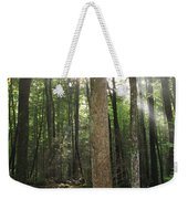 Breakthrough Sun Weekender Tote Bag by Shannon Louder