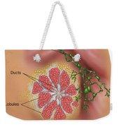 Breast Anatomy Weekender Tote Bag