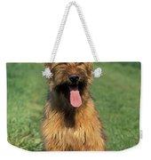 Briard Puppy Weekender Tote Bag