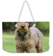 Briard Puppy On Grass Weekender Tote Bag