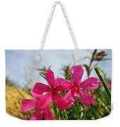 Bright Phlox Blooms Weekender Tote Bag